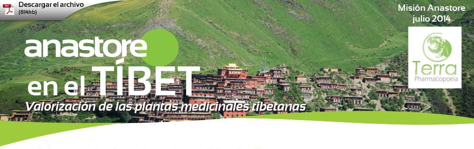 Anastore en el Tibet - Valorización de las plantas medicinales tibetanas